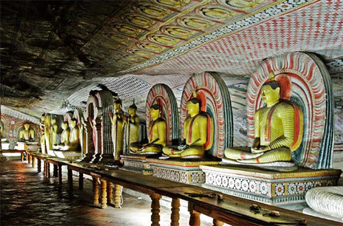 Hire a car and driver in Dambulla