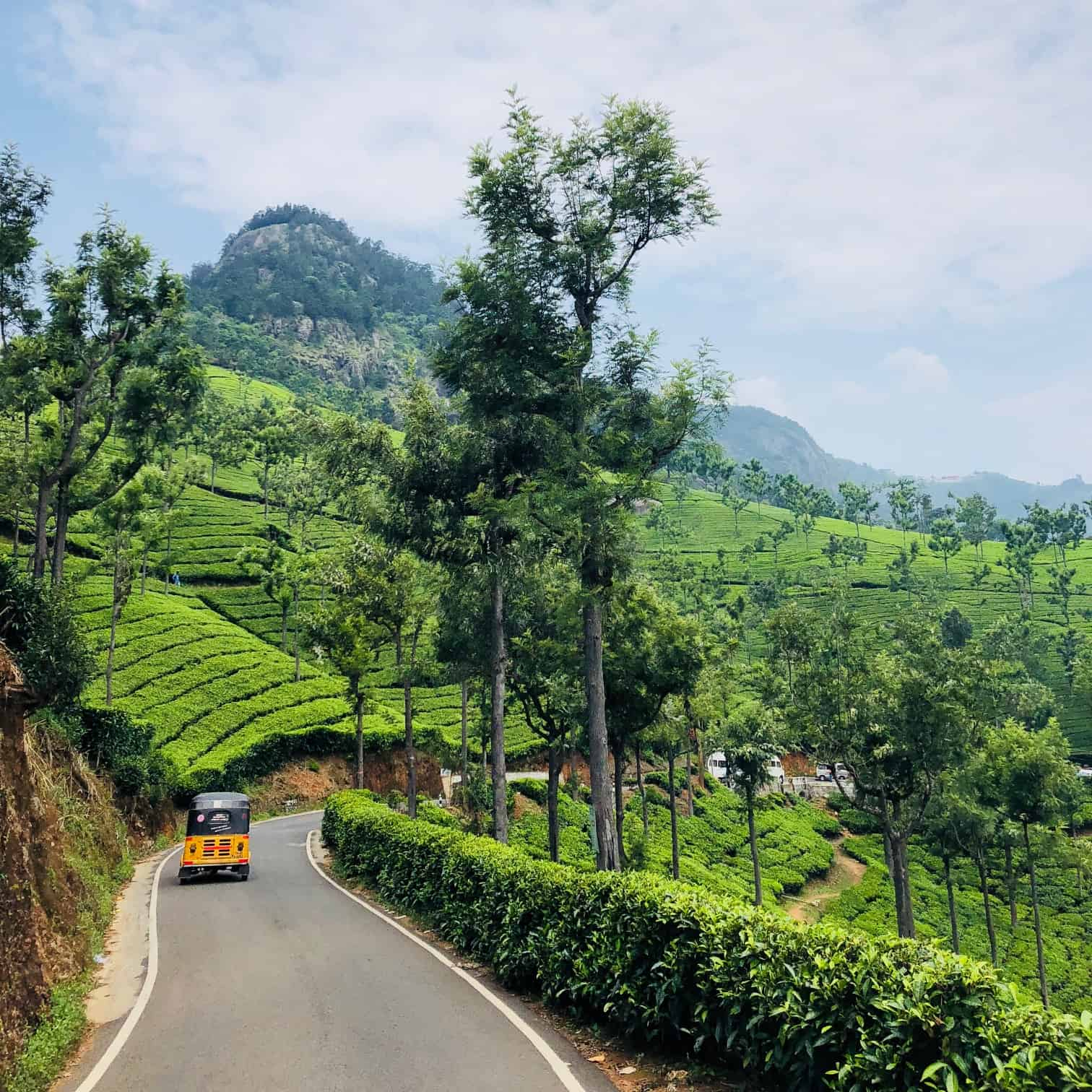 Hire a car and driver in Kotagiri