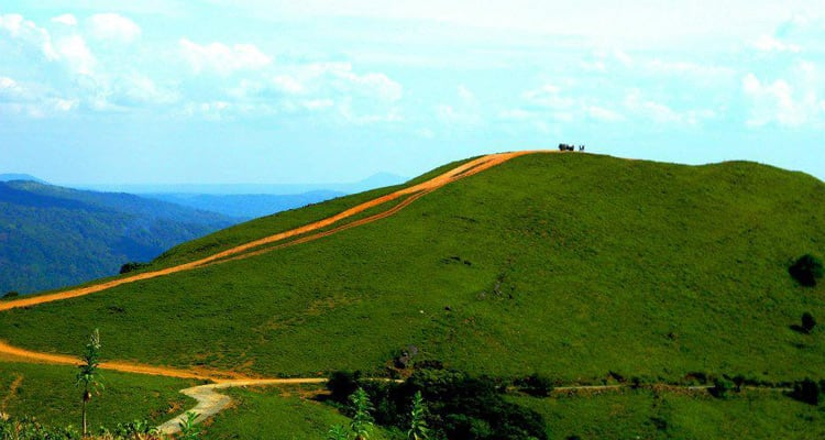 Hire a car and driver in Madikeri