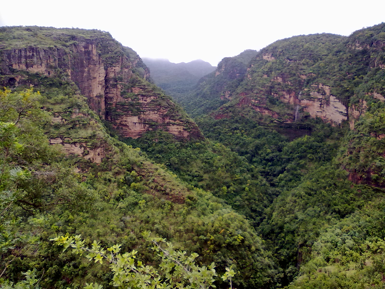 Hire a car and driver in Pachmarhi