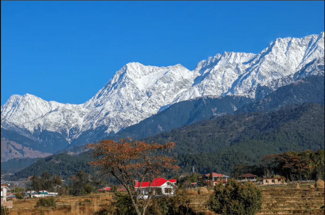 Hire a car and driver in Palampur