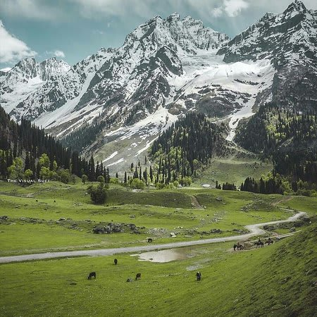Hire a car and driver in Sonmarg