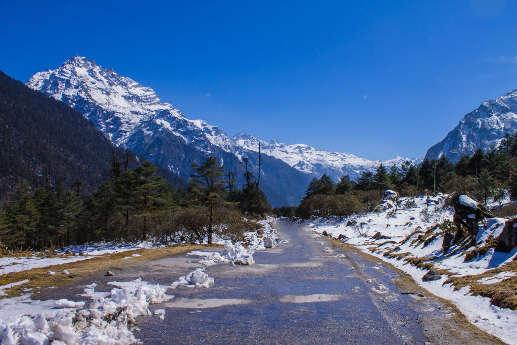 Hire a car and driver in Yumthang