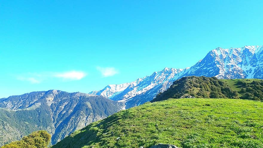 Hire a car and driver in Dharamshala