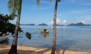 No damage to marine life in El Nido backhoe incident, official says
