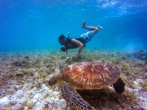 Dive sites and destinations in the Philippines