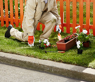 A person planting flowers in the garden