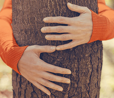 A person hugging a tree
