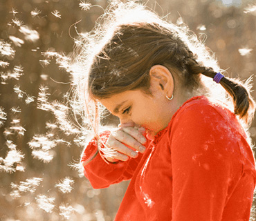 A little girl with braided hair sneezing