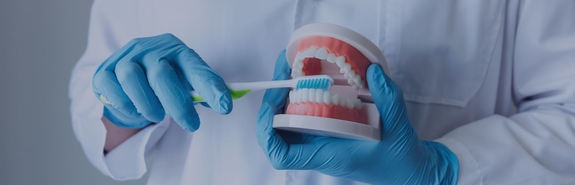 A close up of a set of dentures being held by a dental technician, demonstrating how to brush dentures before instructing on how to use Fixodent denture adhesive.