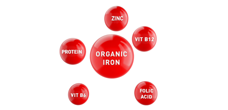 Importance of micronutrients as blood health builders