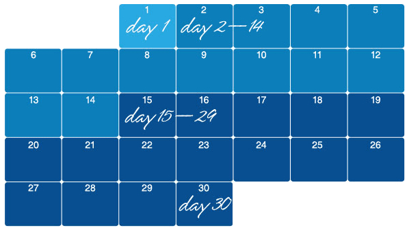 A month-long calendar showing each phase of the adjustment period.