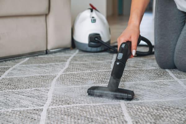 czyszczenie dywany parą
