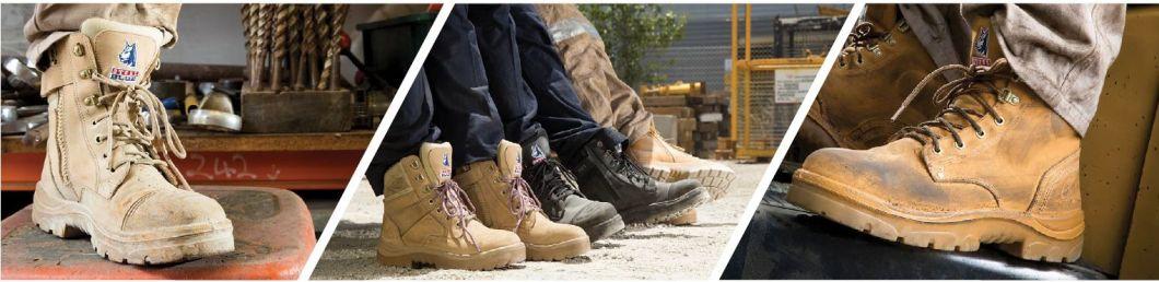 Win-boots-header.2