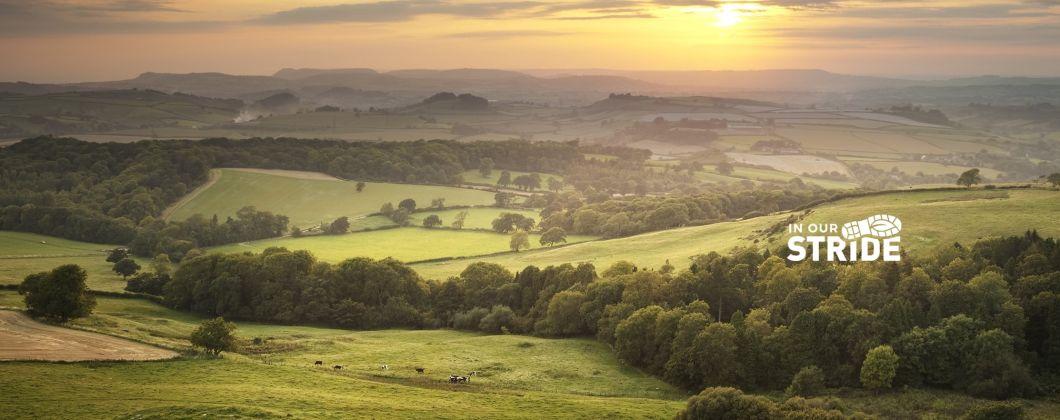 UK Landscape_with logo – cropped
