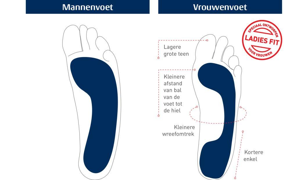 thumbnail_NL_Ladies_Foot_vs_Mens_Diagram_WEB_resized_nopadding_2000width copy