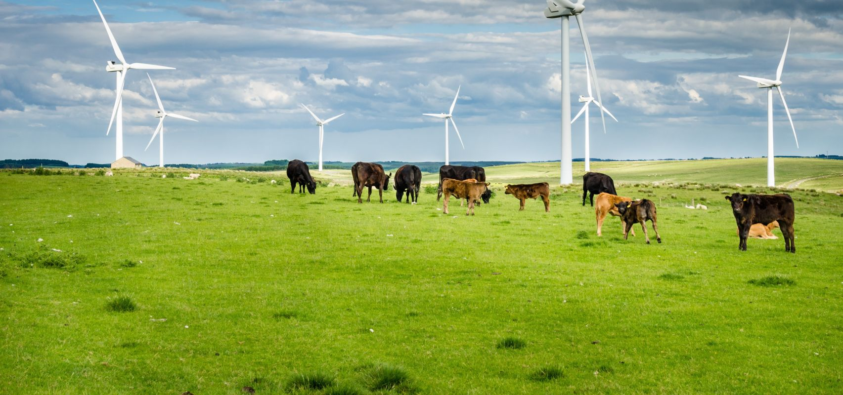 Wind Turbines - UK CSR HR (iStock-585518028) - cropped