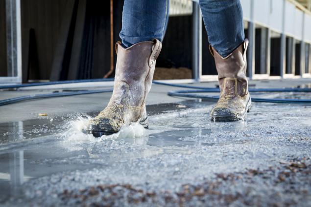 862905M_Heeler-Met water splash and sand. jpg