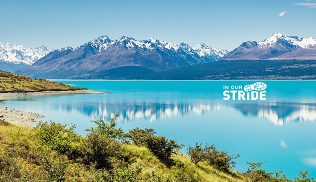 NZ scenery_with logo – cropped for about