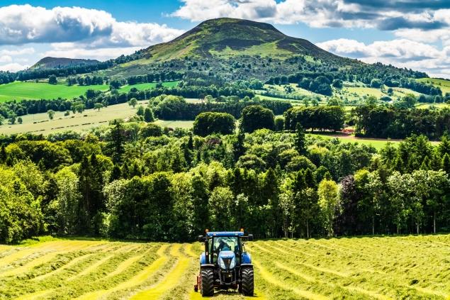Farming – UK CSR LR (iStock-991982382)