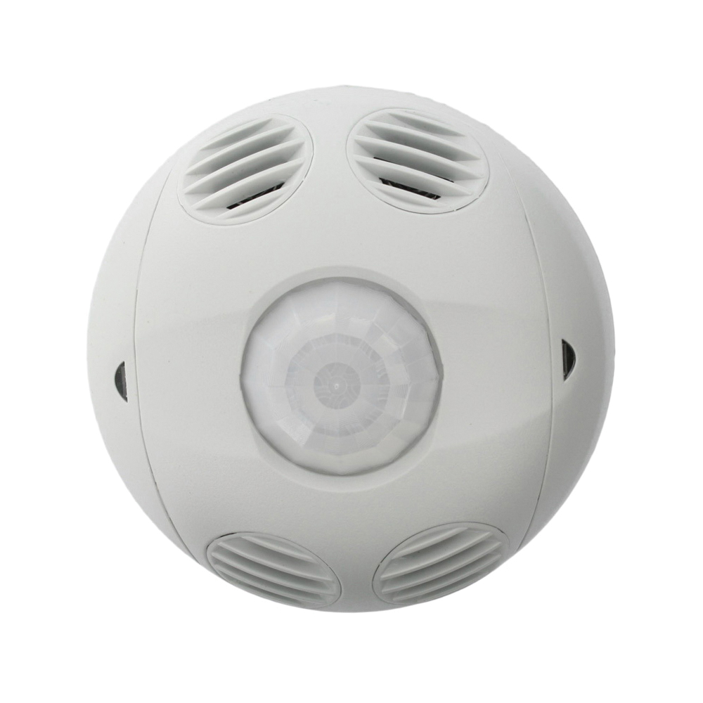Ceiling Mount Occupancy Sensors