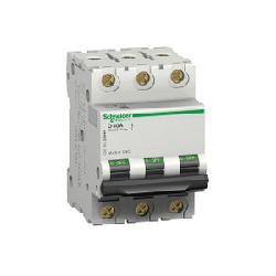 Schneider_Electric_MG17461