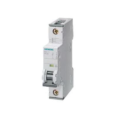 1089266_Siemens_5SY41017