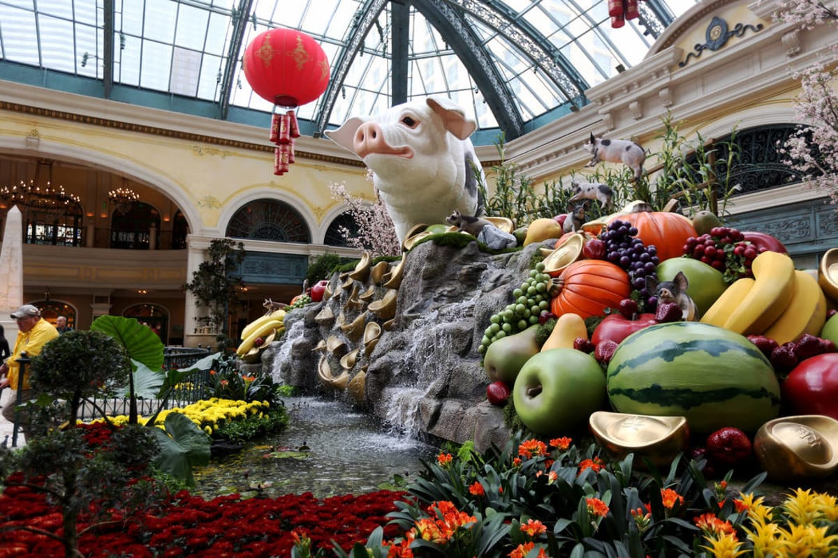 A 12-foot high pig at the west bed of the Chinese New Year Year of the Pig display at the Bellagio Conservatory at the Bellagio in Las Vegas, Monday, Jan. 14, 2019. (Rachel Aston/Las Vegas Review-Journal)