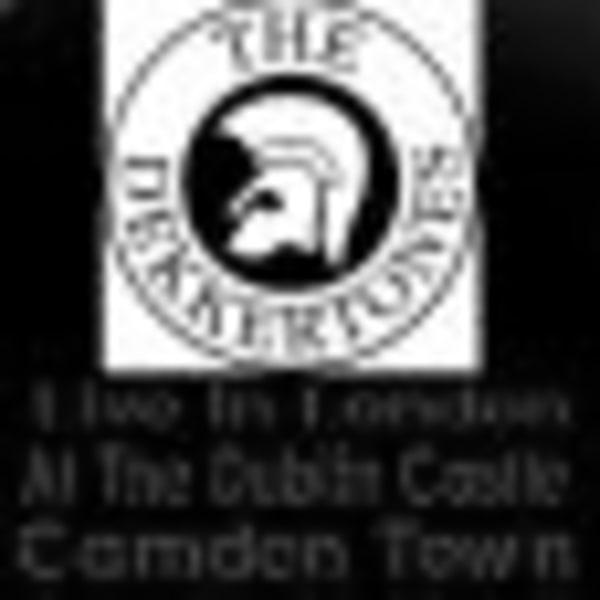 The Dekkertones+Special Guest DJ at Dublin Castle promotional image