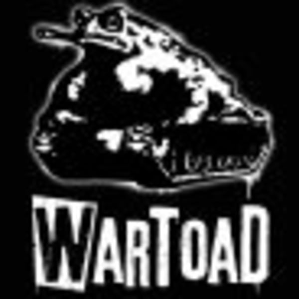 Wartoad + Digital Criminals at Dublin Castle promotional image