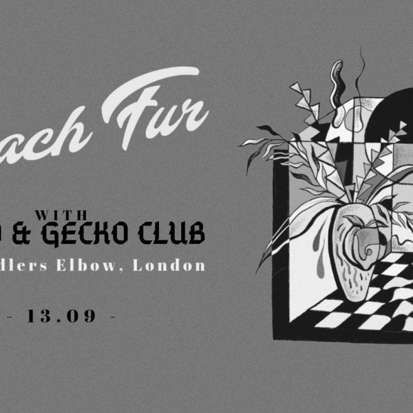 Peach Fur (AUS) PsySo, Gecko Club, at The Fiddler's Elbow promotional image