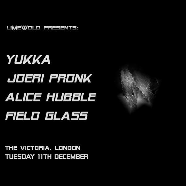 Limewold Presents: Yukka / Joeri Pronk / Alice Hubble at The Victoria promotional image