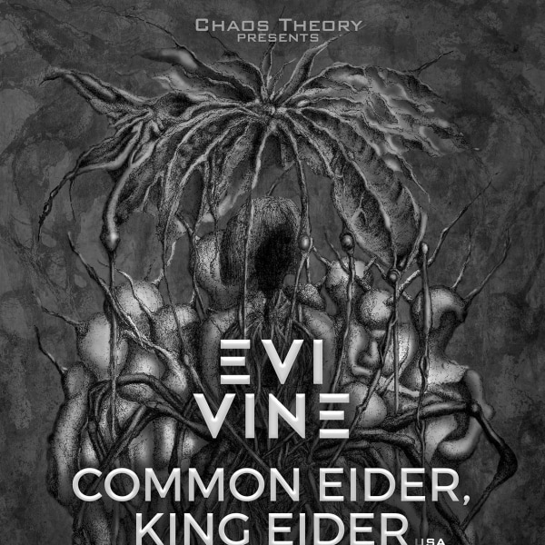 Chaos Theory presents: Evi Vine / Common Eider, King Eider / Drekka at The Victoria promotional image