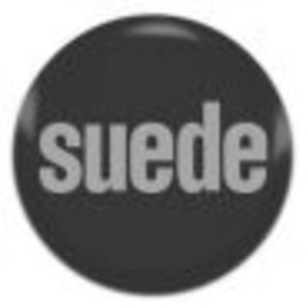 The Insatiable Ones+Suede Fan Meet Up+30 Years Of Suede+Charity Fundraiser at Dublin Castle promotional image