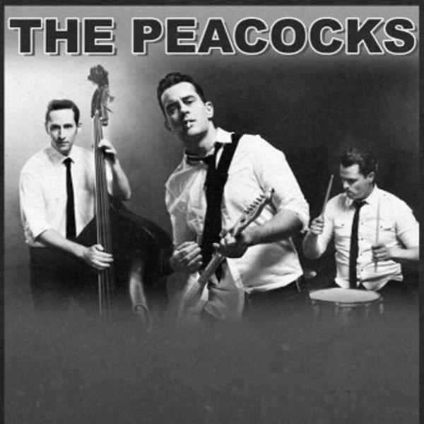 The Peacocks at New Cross Inn promotional image
