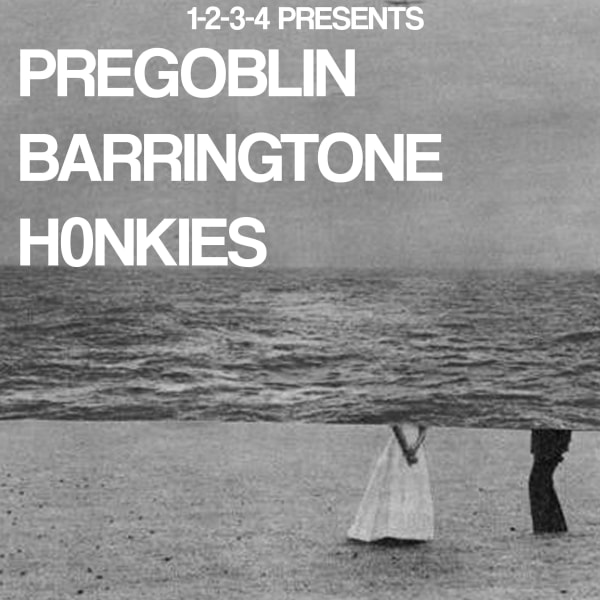 1234 Presents: Pregoblin, Barringtone, H0nkies at The Victoria promotional image