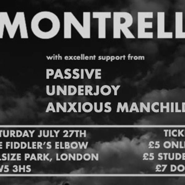 NLTS : LIVE - Montrell, Passive, Underjoy & Anxious Manchild at The Fiddler's Elbow promotional image