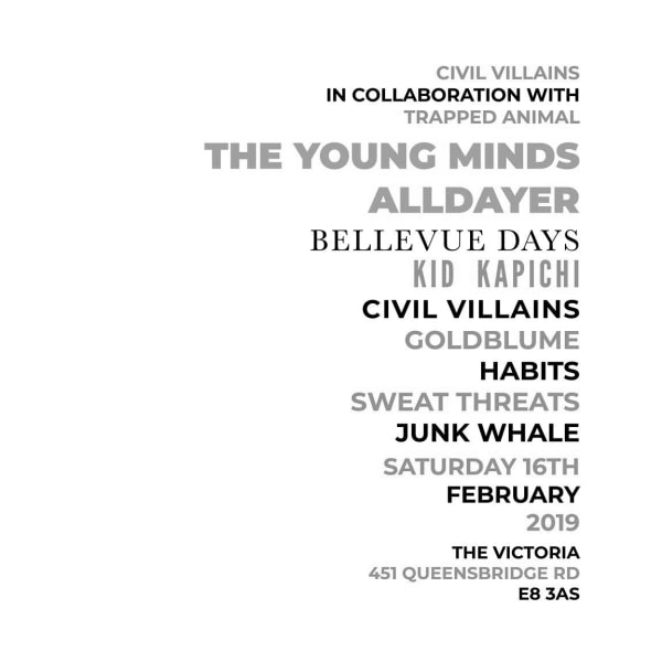 The Young Minds alldayer at The Victoria promotional image