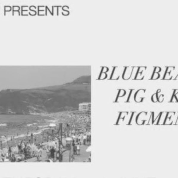 D.I.P presents: Blue Beans // Pig & Kiss // Figments at Sebright Arms promotional image