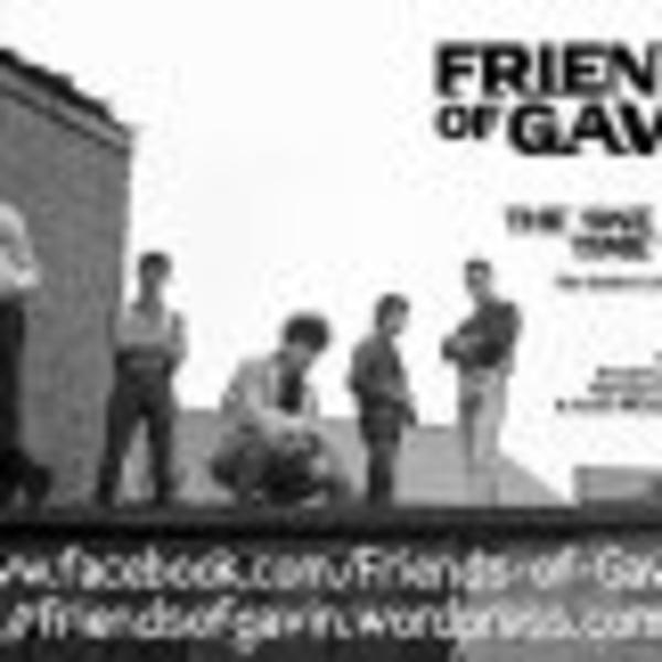 Friends Of Gavin at Dublin Castle promotional image
