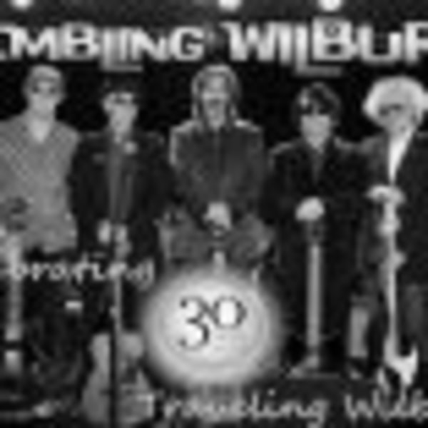 The Trembling Wilburys+Tom McQ at Dublin Castle promotional image
