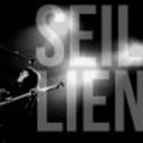 SEIL LIEN+Pattern+Vigilantes at Dublin Castle promotional image
