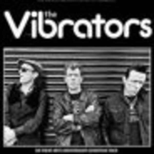 The Vibrators + Steve Hooker Stripped Down Stompin Band + Nuffin at Dublin Castle promotional image