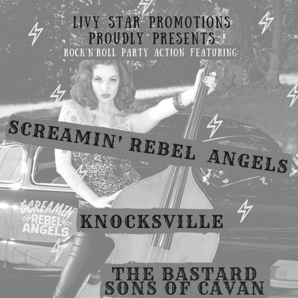 Livy Star Promotions proudly presents...PUNKY ROCK n ROLL at The Fiddler's Elbow promotional image