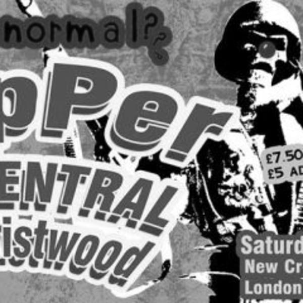 Slapper / Bug Central / anarchistwood at New Cross Inn promotional image