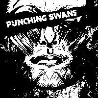 Punching Swans / Screen Wives + MORE TBA at New Cross Inn promotional image