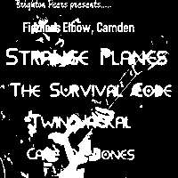 The Survival Code/Twin Jackal/ Strange Planes/Cage of Bones at The Fiddler's Elbow promotional image