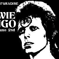 Death In Paradise presents BOWIE BINGO at Sebright Arms promotional image