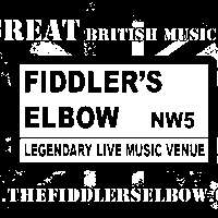 CANTFILLTHEVOID + Guests at The Fiddler's Elbow promotional image