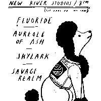 Fluoride / Aureole of Ash / Skylark / Savage Realm at New River Studios promotional image
